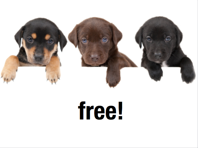 Social Media Free Puppies